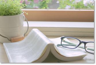 書斎への緑の取り込み
