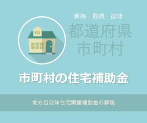 都道府県・市町村 地方公共団体補助金2019